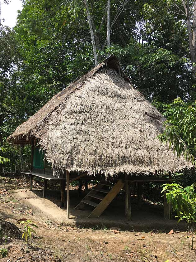 Ayahuasca retreat house